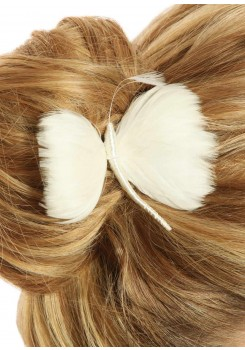 Pic cheveux mariage Dream